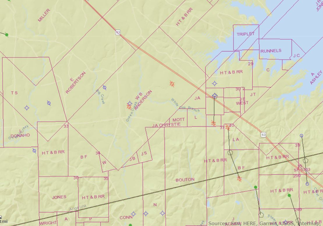 Angelina County - WB Anderson Survey